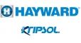 HAYWARD/KRIPSOL